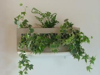 Le cadre végétal, un cadeau original