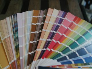 Peinture bio : Tout ce qu'il faut savoir sur cette nouvelle tendance